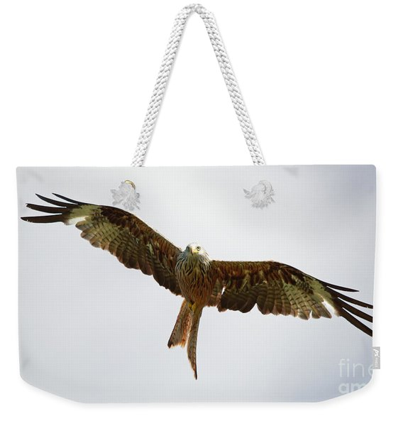 Red Kite In Flight Weekender Tote Bag