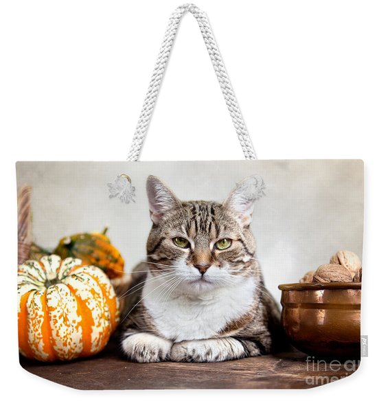 Cat And Pumpkins Weekender Tote Bag