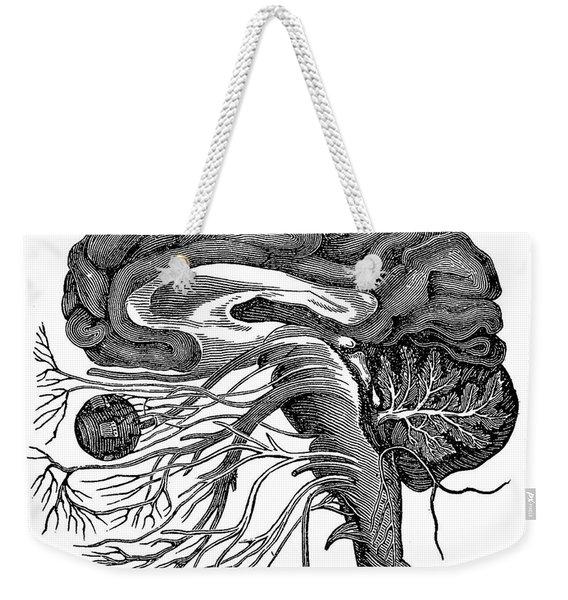 Brain And Cranial Nerves Weekender Tote Bag