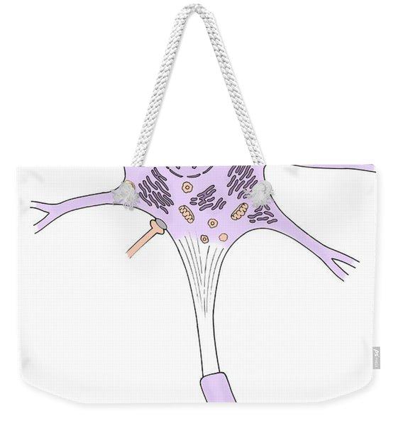 Illustration Of Motor Neuron Weekender Tote Bag