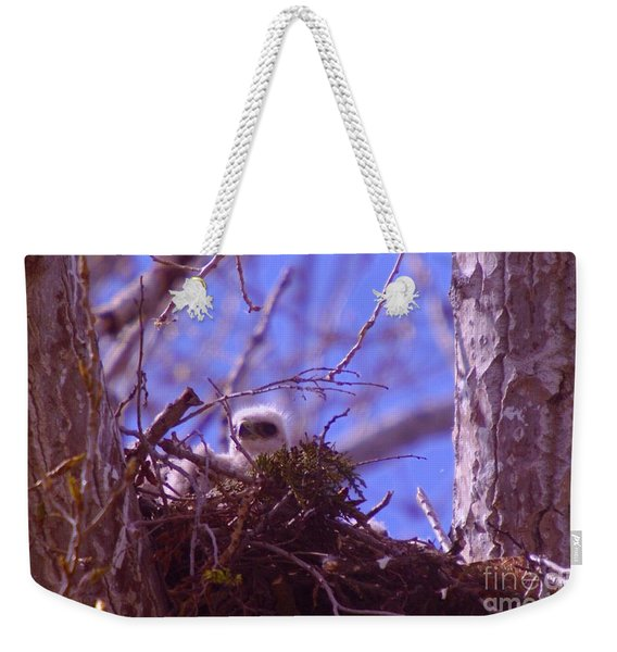 A Baby Red Tail Gazing From Its Nest Weekender Tote Bag