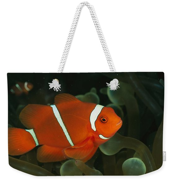 A Brilliant, Flourescent-orange Weekender Tote Bag