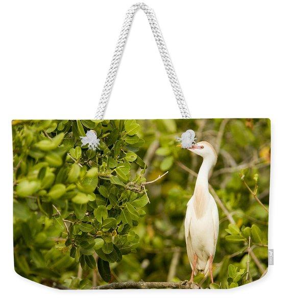 A Cattle Egret Bubulcus Ibis Portrait Weekender Tote Bag