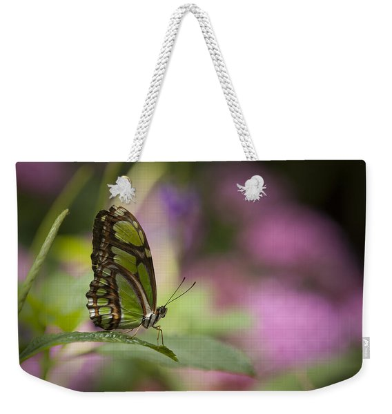A Green Butterfly Weekender Tote Bag