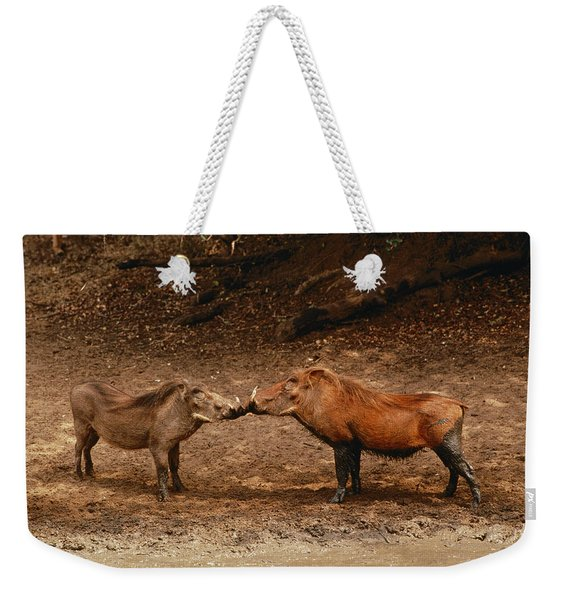 A Male And Female Warthog Kiss Noses Weekender Tote Bag