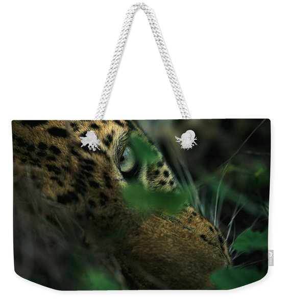A Male Leopard Dozes Weekender Tote Bag