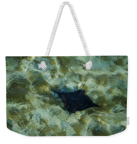 A Manta Ray Glides Through The Coral Weekender Tote Bag