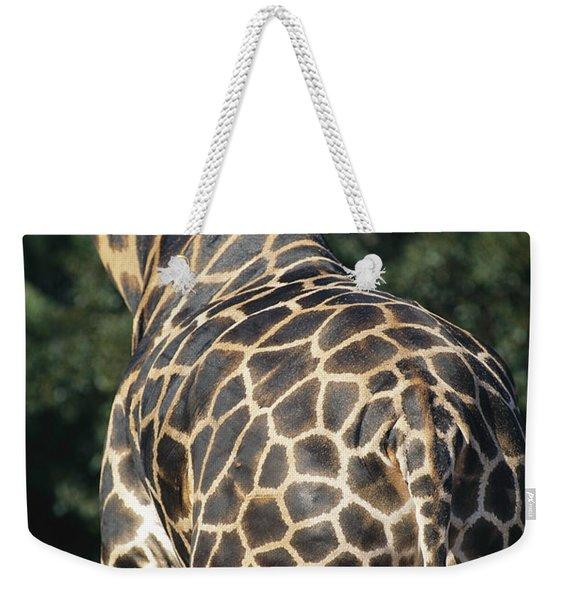 A Rear View Of A Rothschild Giraffe Weekender Tote Bag