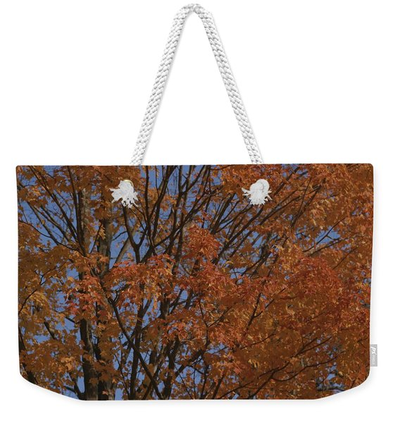 A Sugar Maple Blazes With Fall Color Weekender Tote Bag