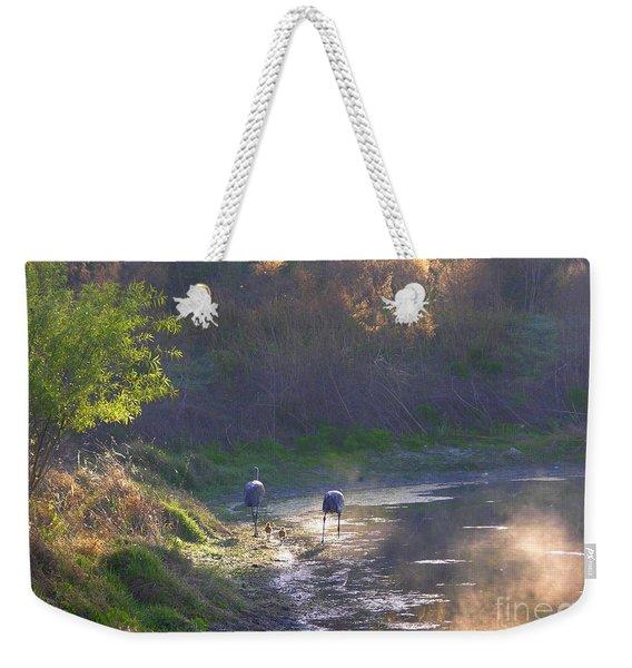 A Walk Through Morning Sunshine Weekender Tote Bag