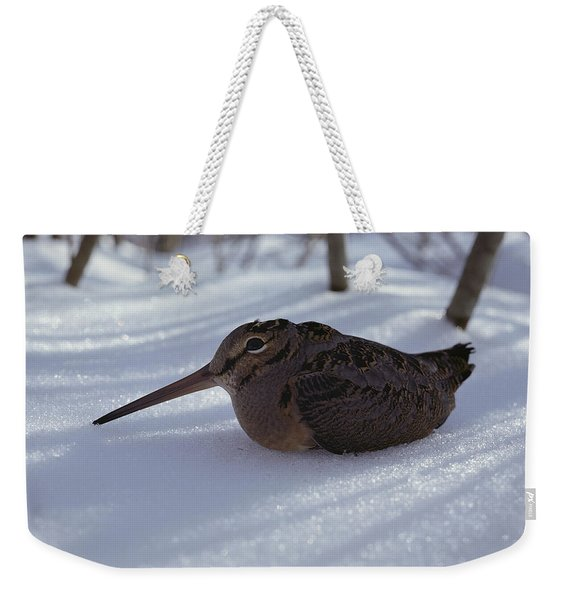 A Woodcock Sits In The Snow Weekender Tote Bag