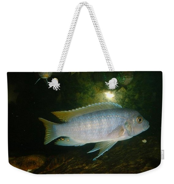 Aquarium Life Weekender Tote Bag