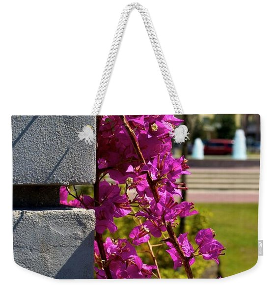 Ave Maria Walk Weekender Tote Bag