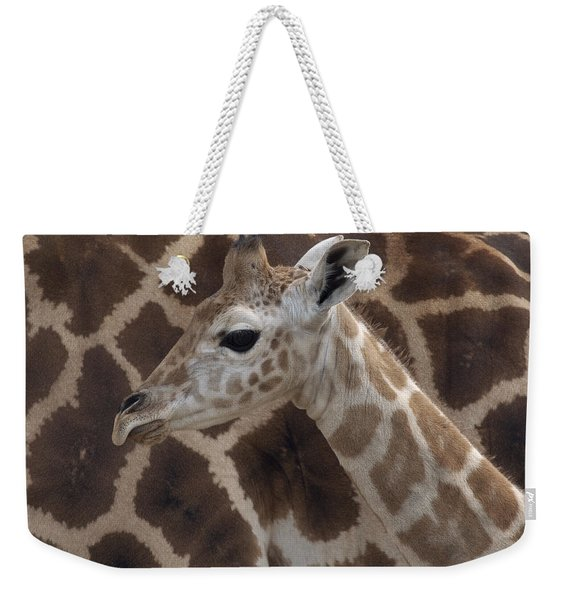 Baby Rothschild Giraffe  Weekender Tote Bag