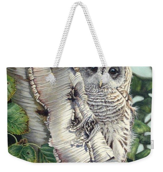 Barred Owl II Weekender Tote Bag