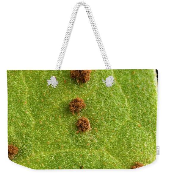 Bean Leaf With Rust Pustules Weekender Tote Bag