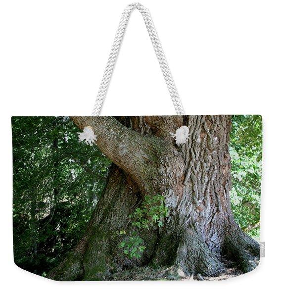 Weekender Tote Bag featuring the photograph Big Fat Tree Trunk by Lorraine Devon Wilke