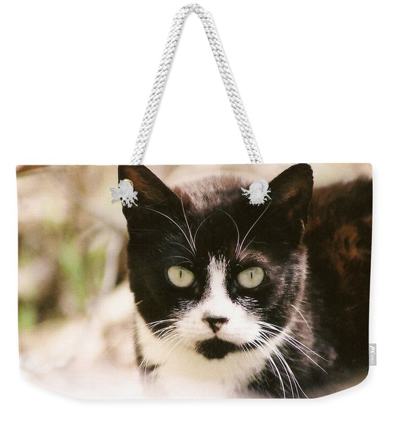 Black And White Feral Cat Weekender Tote Bag