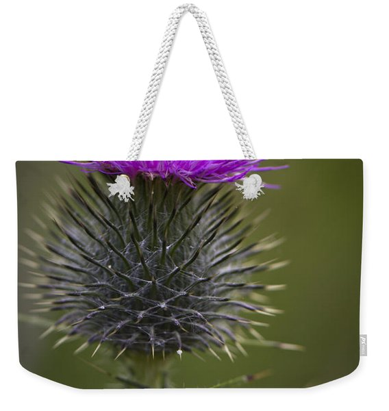 Blooming Thistle Weekender Tote Bag