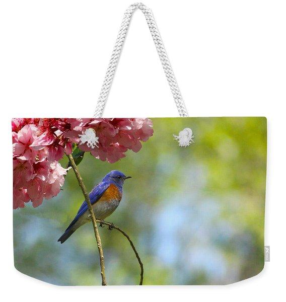 Bluebird In Cherry Tree Weekender Tote Bag