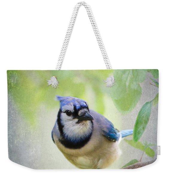 Bluejay In A Tree Weekender Tote Bag