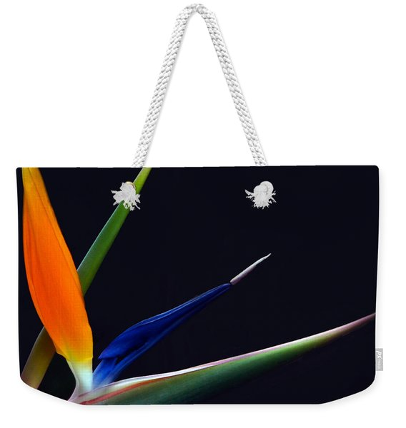 Bright Bird Of Paradise Square Frame Weekender Tote Bag