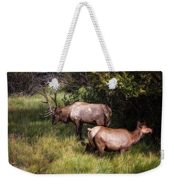 Bull Elk 7x7 Weekender Tote Bag