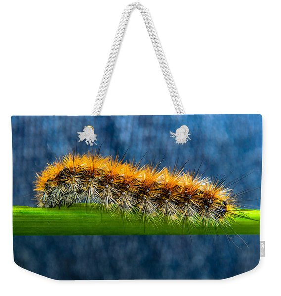 Butterfly Caterpillar Larva On The Stem Weekender Tote Bag