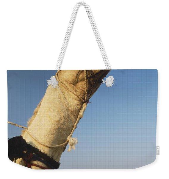 Camel And Great Pyramids Of Giza Weekender Tote Bag