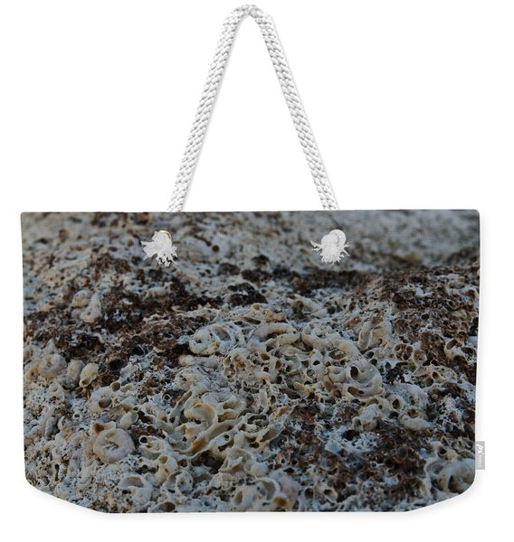 Weekender Tote Bag featuring the photograph Cemetery Clams by Michael Goyberg