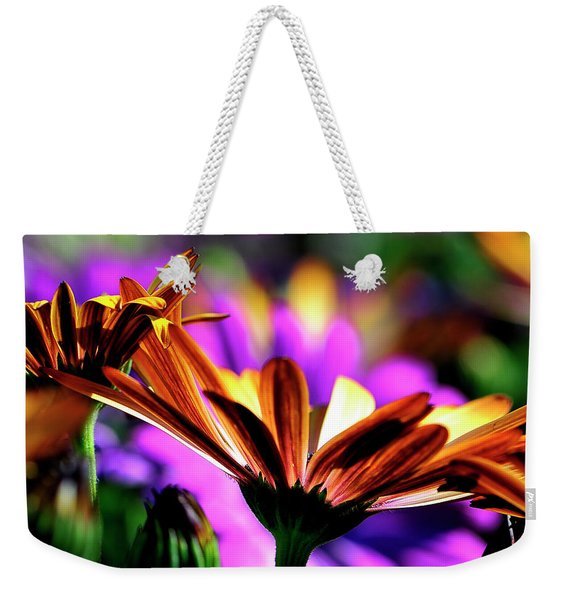 Color And Light Weekender Tote Bag