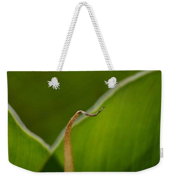 Curled Weekender Tote Bag