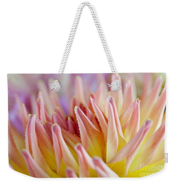 Dahlia Flower 05 Weekender Tote Bag