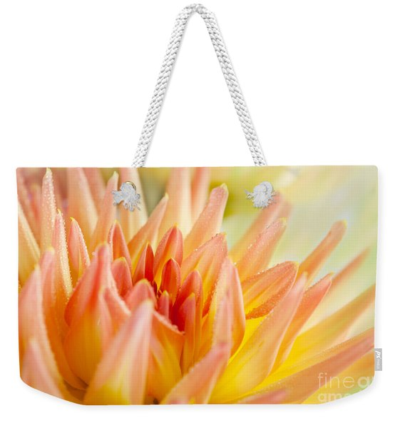 Dahlia Flower 06 Weekender Tote Bag