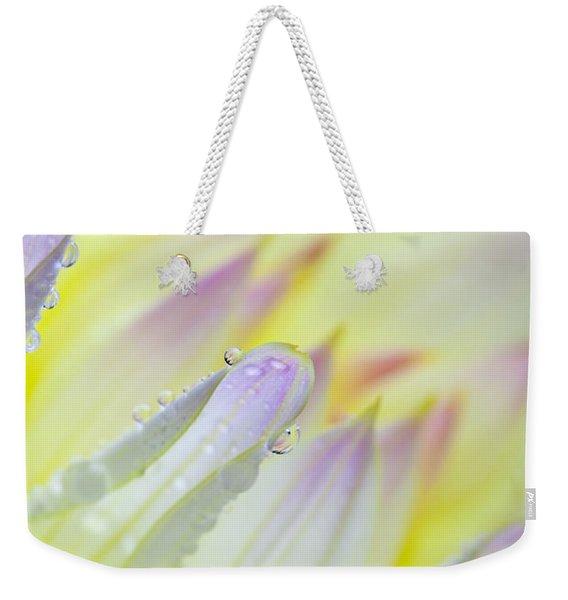 Dahlia Flower 07 Weekender Tote Bag