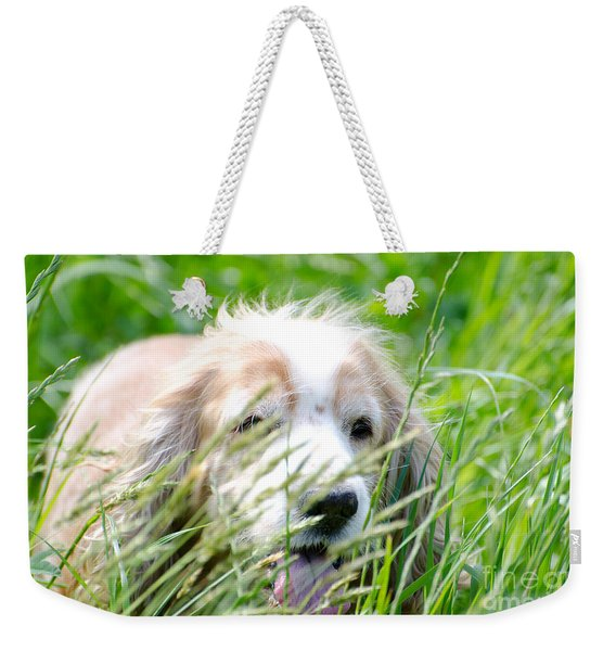 Dog In The Green Grass Weekender Tote Bag