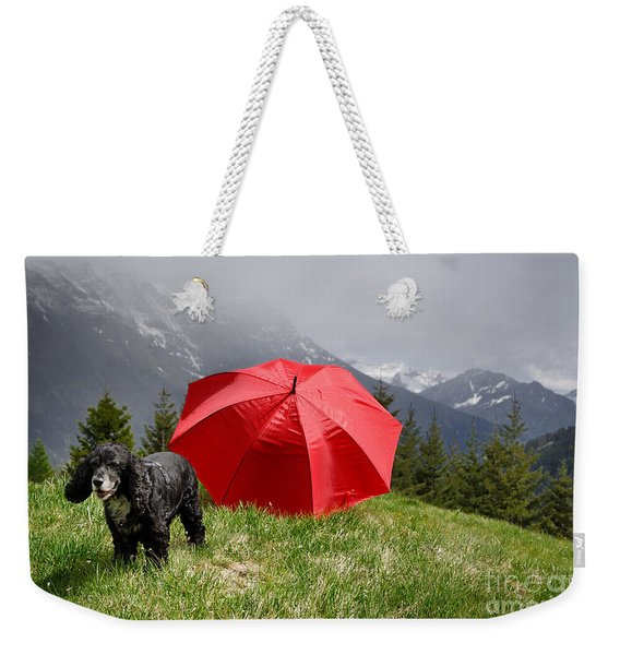 Dog On The Top Of A Mountain Weekender Tote Bag