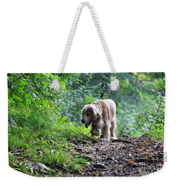 Dog Walking Weekender Tote Bag