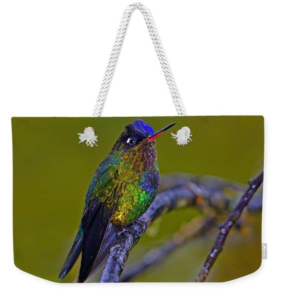 Fiery-throated Hummingbird Weekender Tote Bag