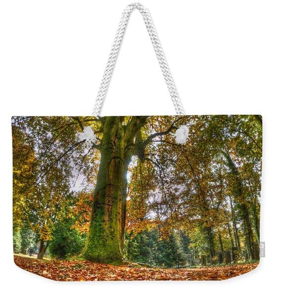 Fish-eye Autumn Tree Weekender Tote Bag