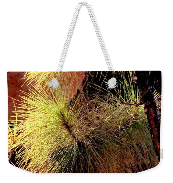 Florida Tree Weekender Tote Bag