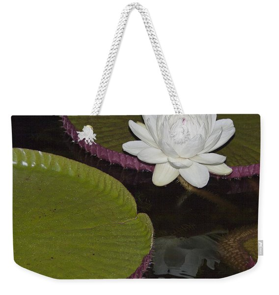 Victoria Amazonica White Flower Weekender Tote Bag