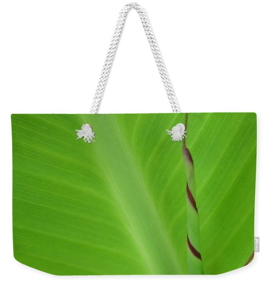 Green Leaf With Spiral New Growth Weekender Tote Bag