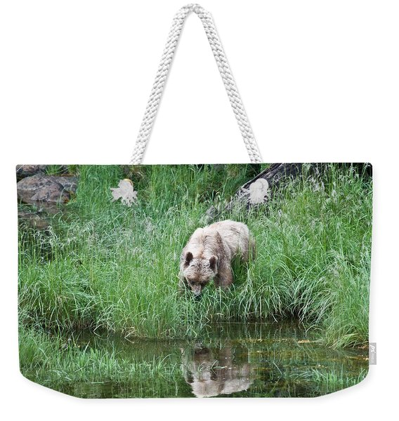 Grizzly Bear And Reflection On Prince Rupert Island Canada 2209 Weekender Tote Bag