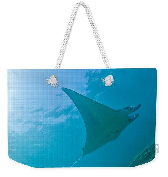 Group Of Manta Rays In Blue Water Weekender Tote Bag