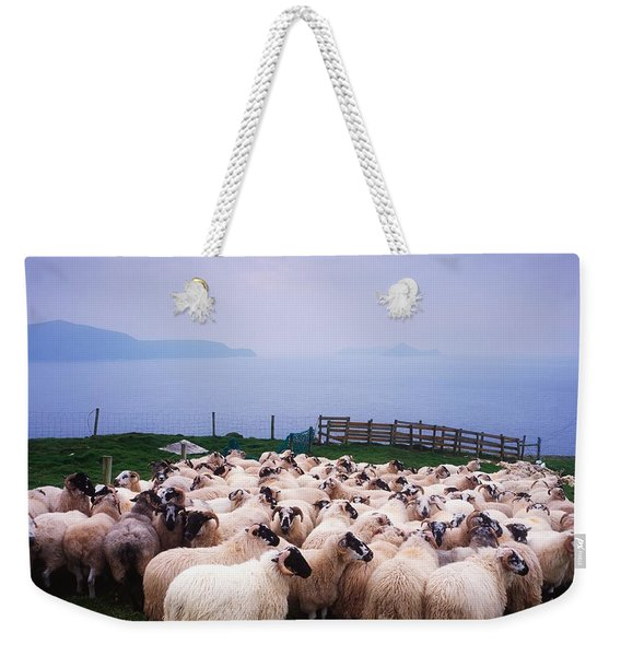 Herding Sheep, Inishtooskert, Blasket Weekender Tote Bag