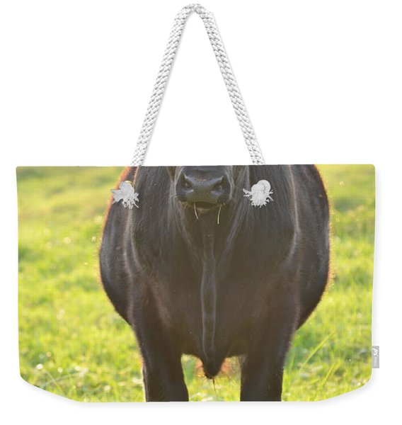 Here's The Beef Weekender Tote Bag