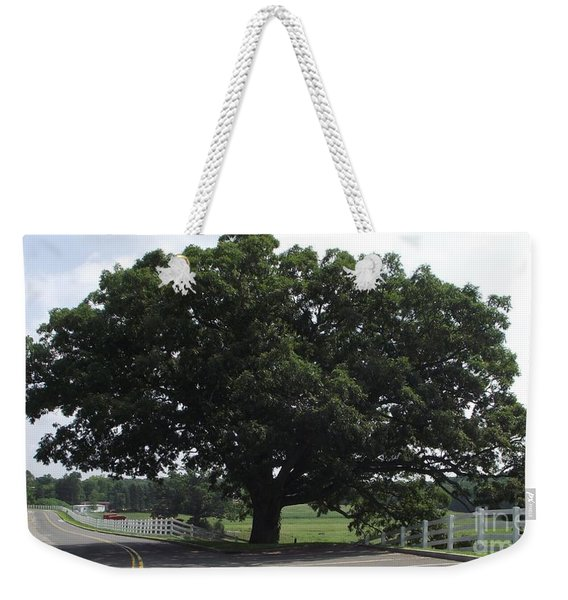 Horse Barn Hill Uconn  Weekender Tote Bag