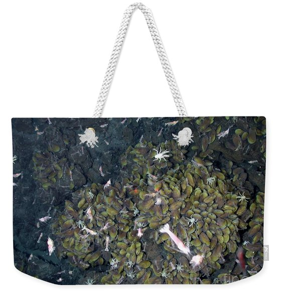 Hydrothermal Vent Community Weekender Tote Bag
