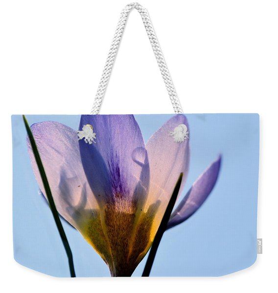 If I Was An Ant Weekender Tote Bag